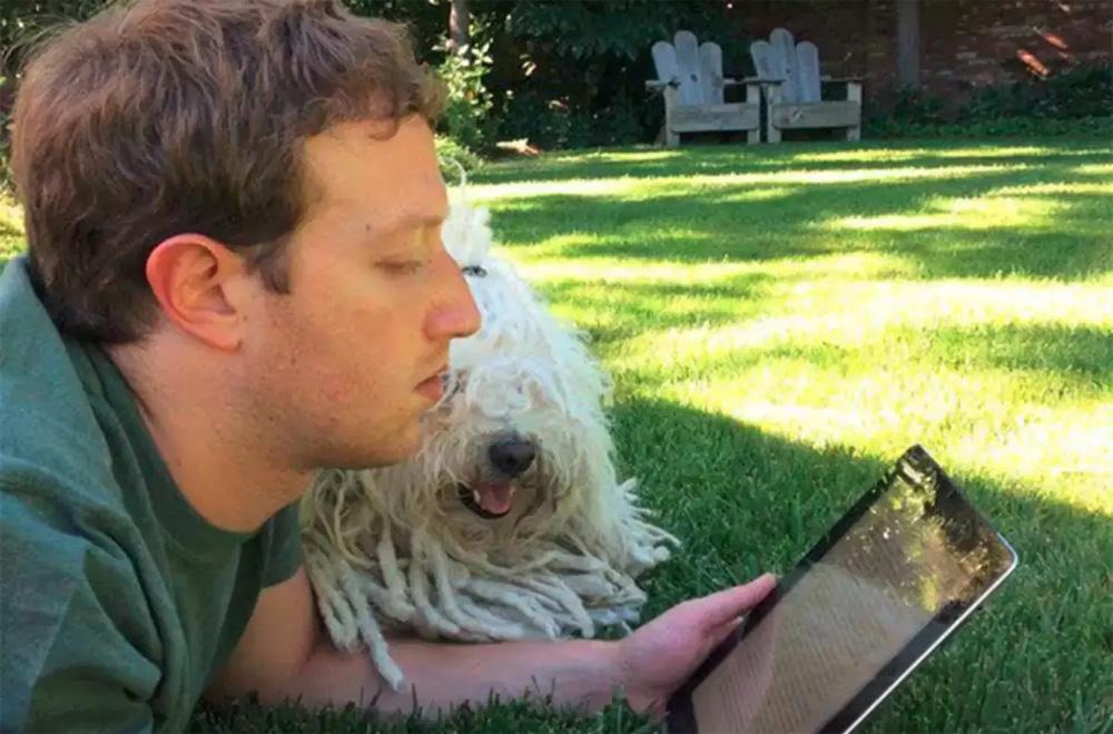 Цукерберг читает несколько часов в день